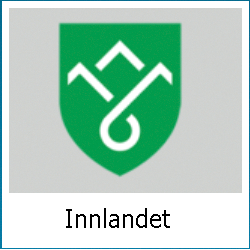 Takstmann Hamar